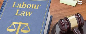 Employment Law Updates for 2016